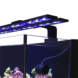 Something Fishy Aquarium Supplies Lighting