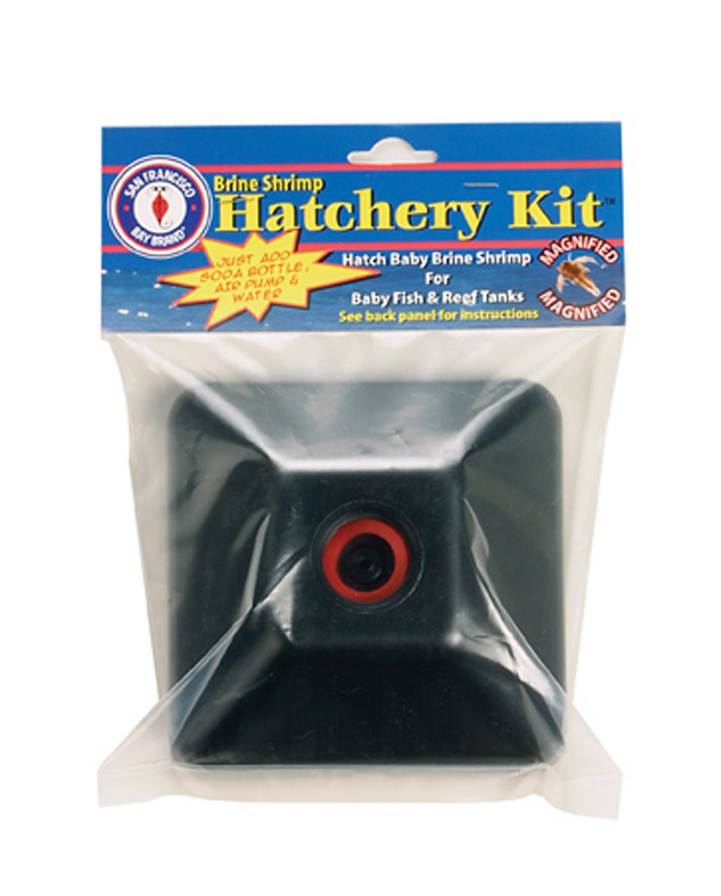 San Francisco Bay Brine Shrimp Hatchery Kit