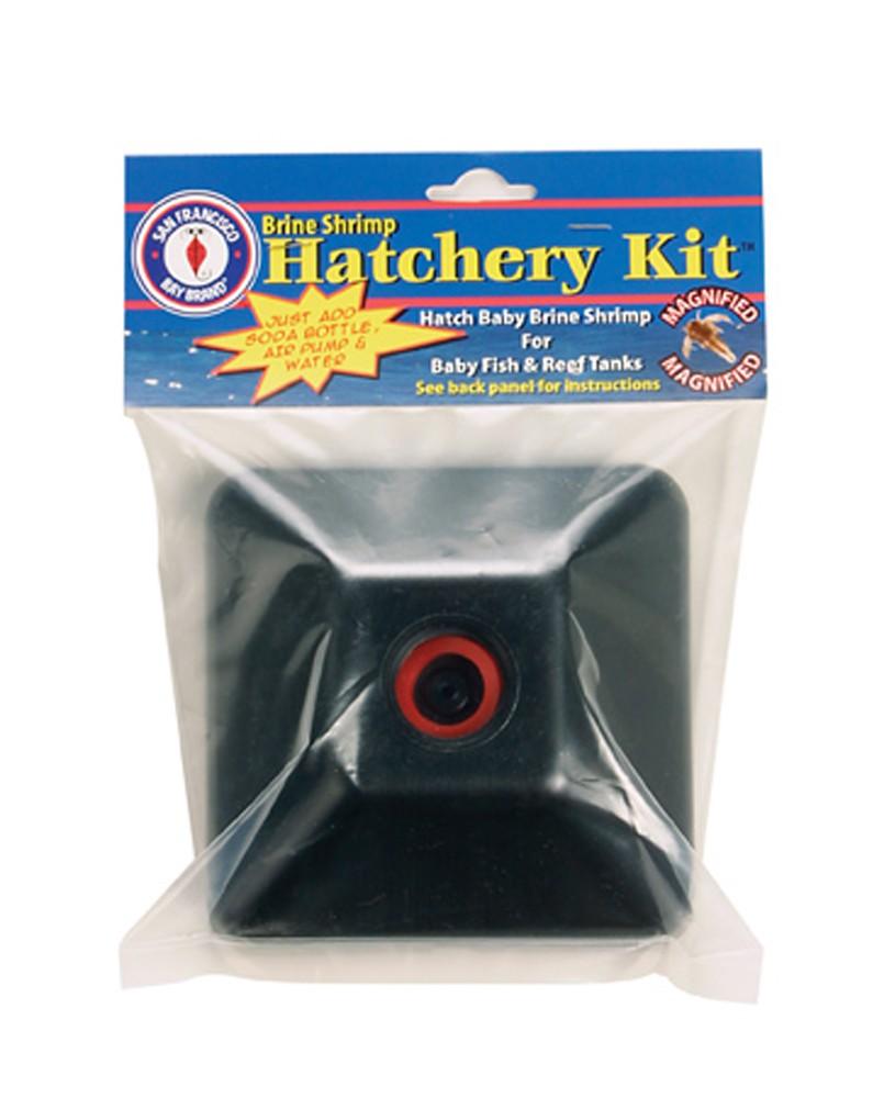 San Francisco Bay Brine Shrimp Hatchery Kit