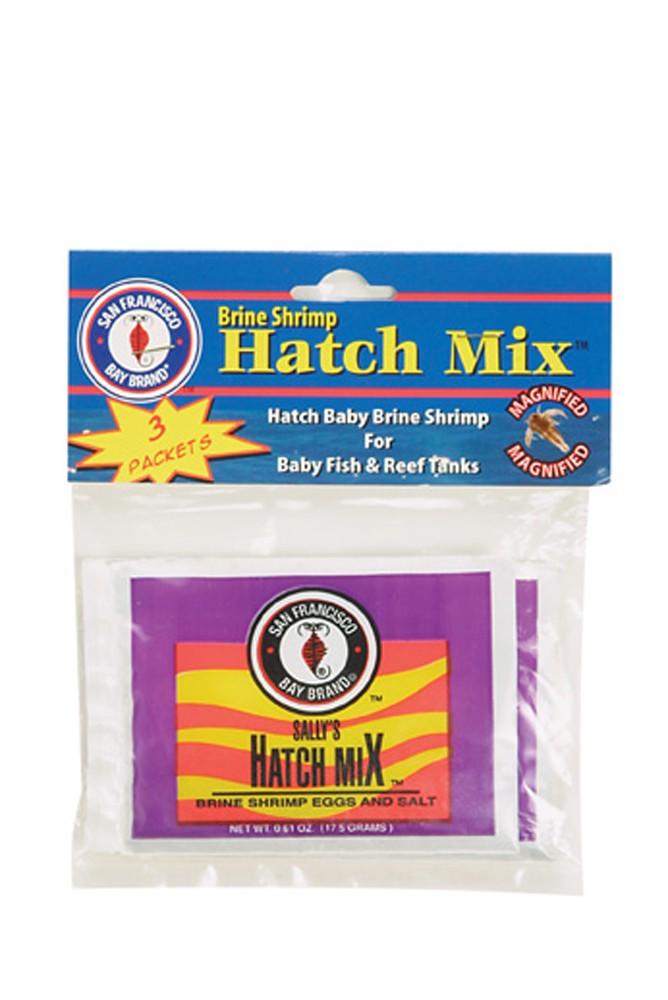 San Francisco Bay Brine Shrimp Eggs Hatch Mix