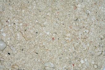 Carib Sea Ocean Direct Natural Live Sand 5lb
