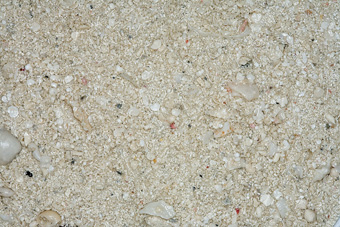Carib Sea Ocean Direct Natural Live Sand 20lb