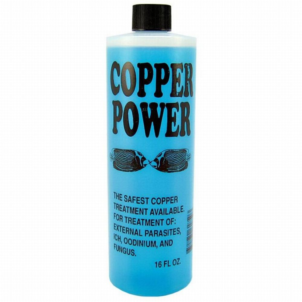 Copper Power Blue 16oz
