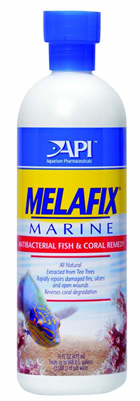 API Melafix Liquid Remedy 16oz