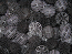 Black Bio Balls 1-Gallon Bag