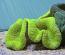Lime Green Carpet Anemone