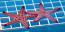Marbled Starfish