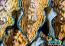"""ORA Tridacna derasa 3.5"""""""