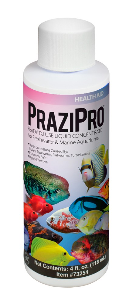 Hikari PraziPro Praziquantel Solution 4oz.