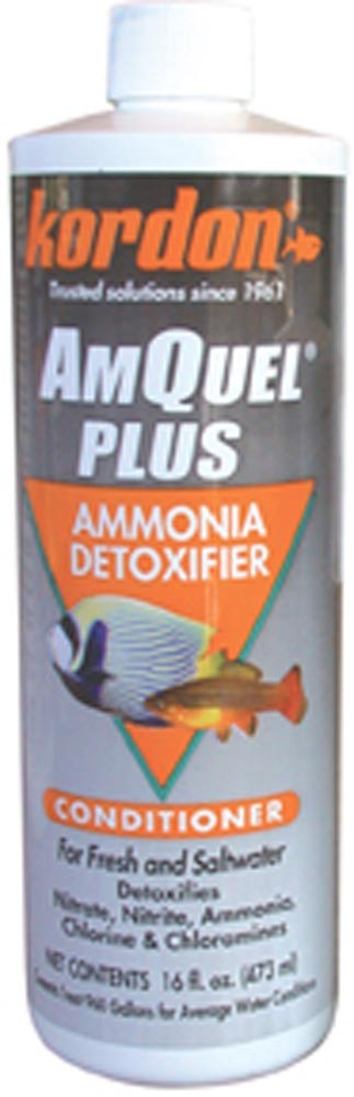 Kordon AmQuel Plus Ammonia Remover Conditioner 16oz