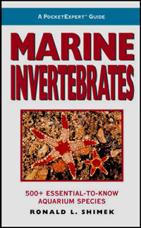 PocketExpert Guide: Marine Invertebrates