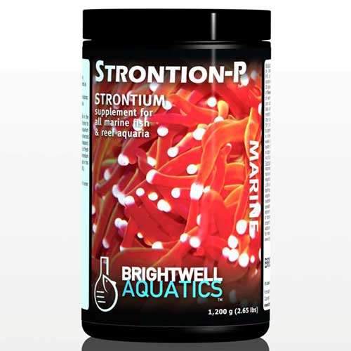 Brightwell Aquatics Strontion-P - Dry Strontium Supplement for Reef Aquaria 600 g. / 1.3 lbs..